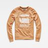 G-Star RAW® Core Art Sweater Brown flat front