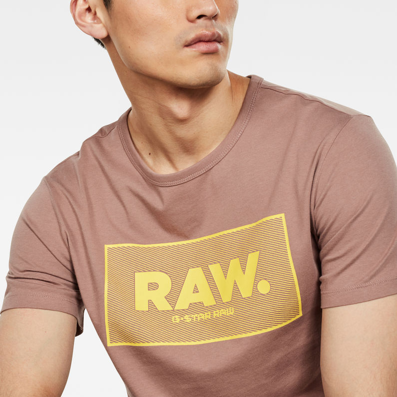 G-Star Boxed Logo GR T-Shirt Chocolate Berry D16375